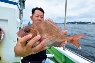 コマセで釣るか、テンヤ&タイラバで釣るか?!東京湾の秋ダイ