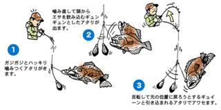 の 釣り アジ 泳がせ