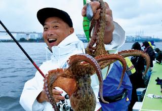 [帰ってきた沖釣り探偵K(第17回)]マダコのおいしいゆで方を探せ!