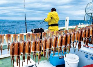 イカ名人の技に学ぶ多点テク~スルメ釣りの楽園・石廊崎沖~