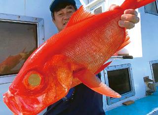 【石廊崎沖のキンメ快調!】気軽にフルレンタル、本格深場釣り入門にもおすすめ!