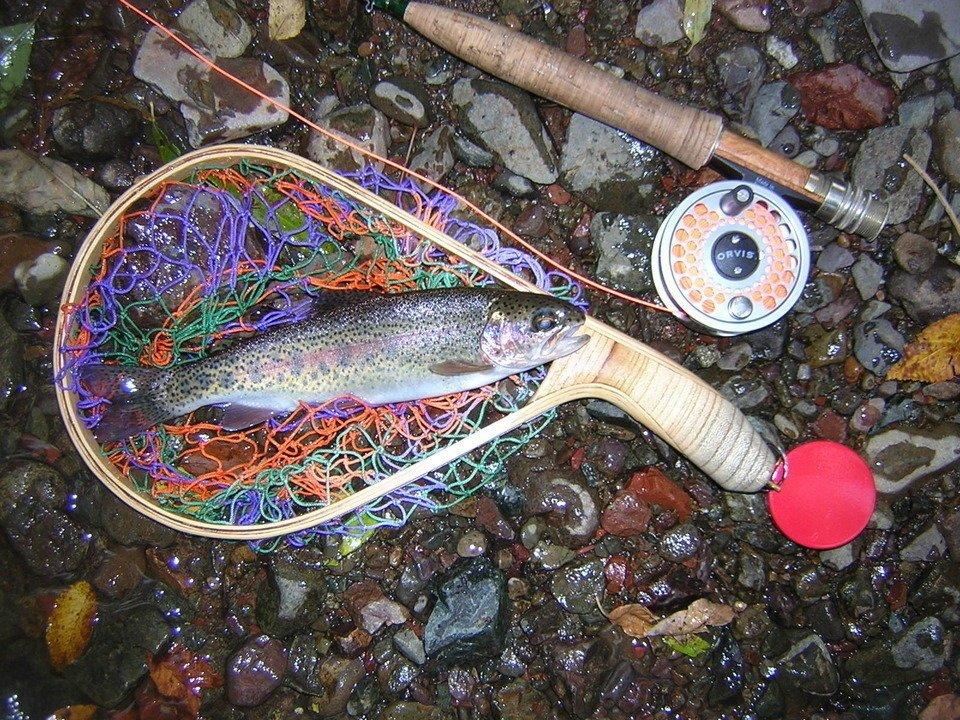 ヤマメ 渓流釣り フィッシングベスト