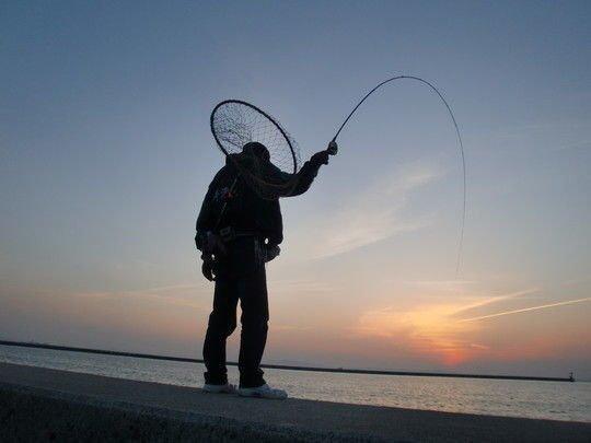 釣り コスリ釣り 写真