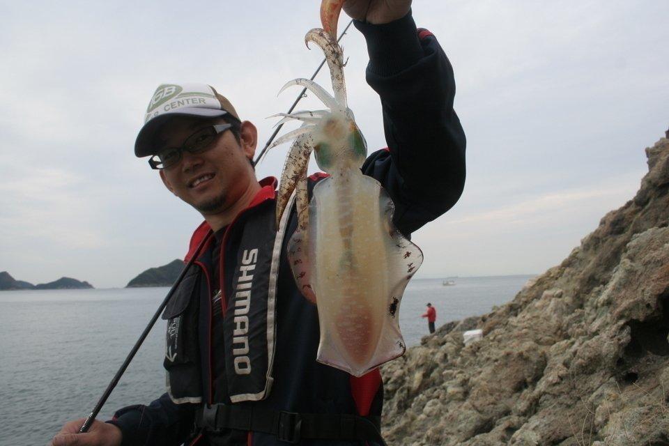 アオリイカ エギング 釣り人 写真