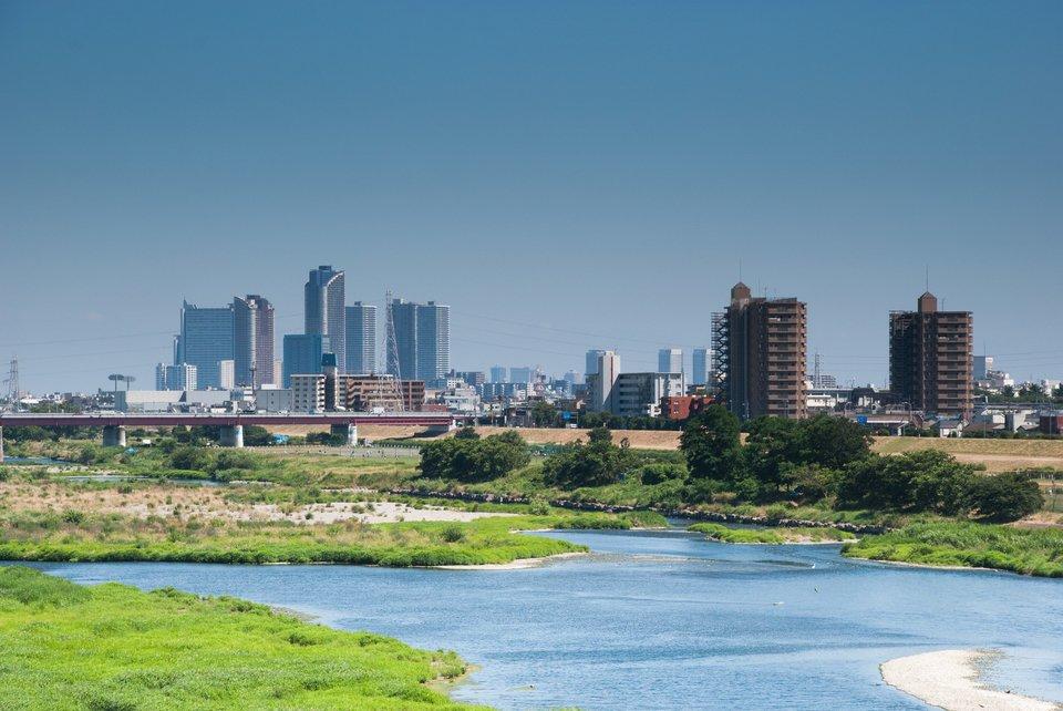 多摩川 写真
