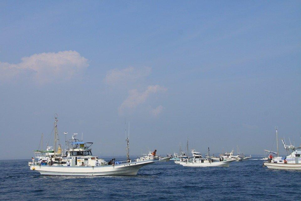 釣り船 船団 写真