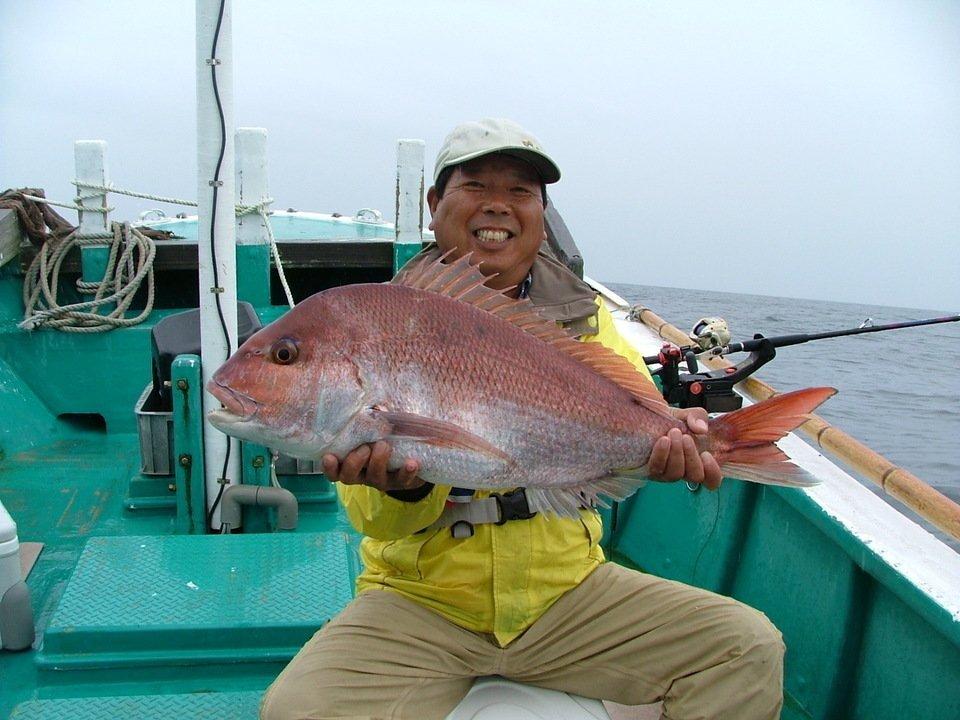 マダイ 釣り人 写真