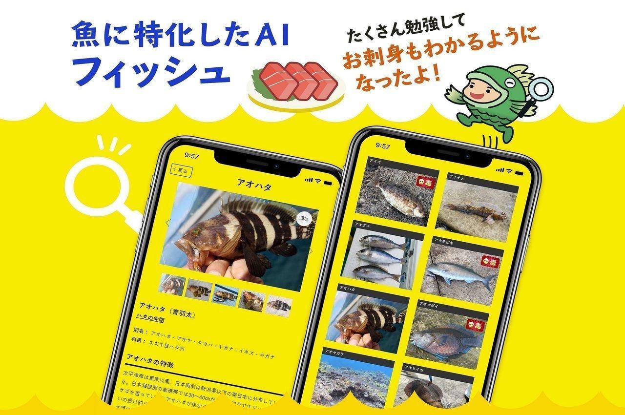 【無料】魚図鑑AIアプリ「フィッシュ」がリリース!釣った魚の写真を撮るだけで簡単に魚種がわかっちゃいます!