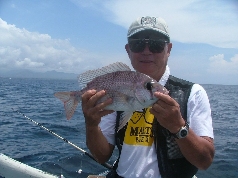 シロダイは鯛の女王に君臨するほど美しい!船を流しながら広範囲を探った方が効率的!?釣り人がシロダイ釣りに魅了されるその訳に迫ります!