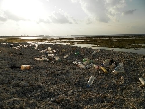 ゴミ 釣り場 写真