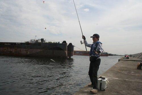 釣り人 釣り竿 アジ クーラーボックス 防波堤 写真