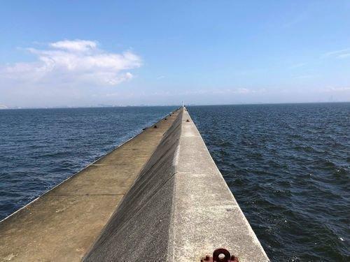 クロダイ 釣り人 防波堤 海 青空 写真