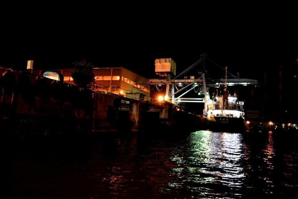 夜 堤防 サビキ釣り