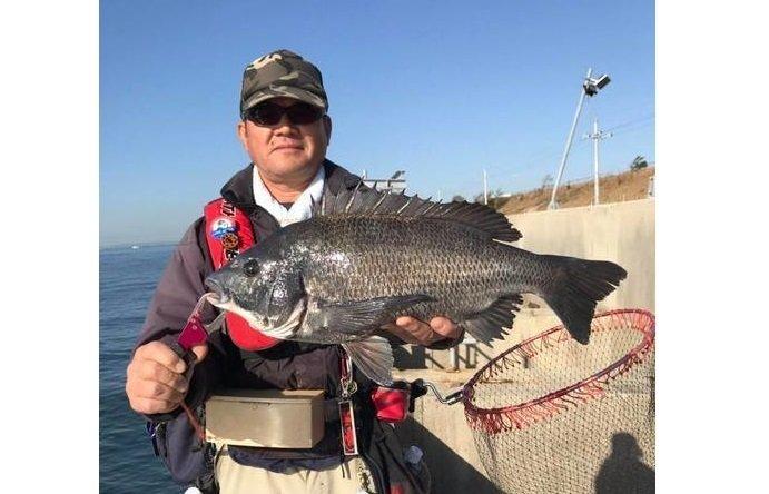 釣り人 男性 クロダイ タモ 埠頭 青空 写真