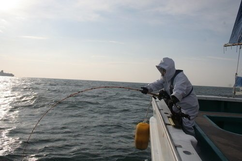 釣り人 釣り竿 泳がせ釣り