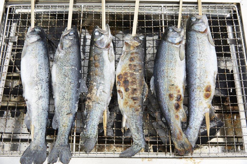 魚 串焼き 炭火 網 写真