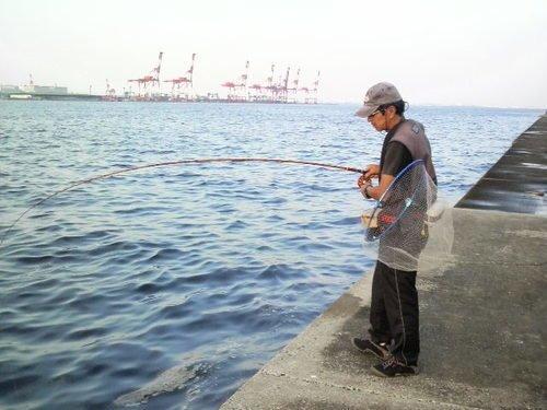 釣り人 男性 釣り竿 タモ 埠頭 海 写真