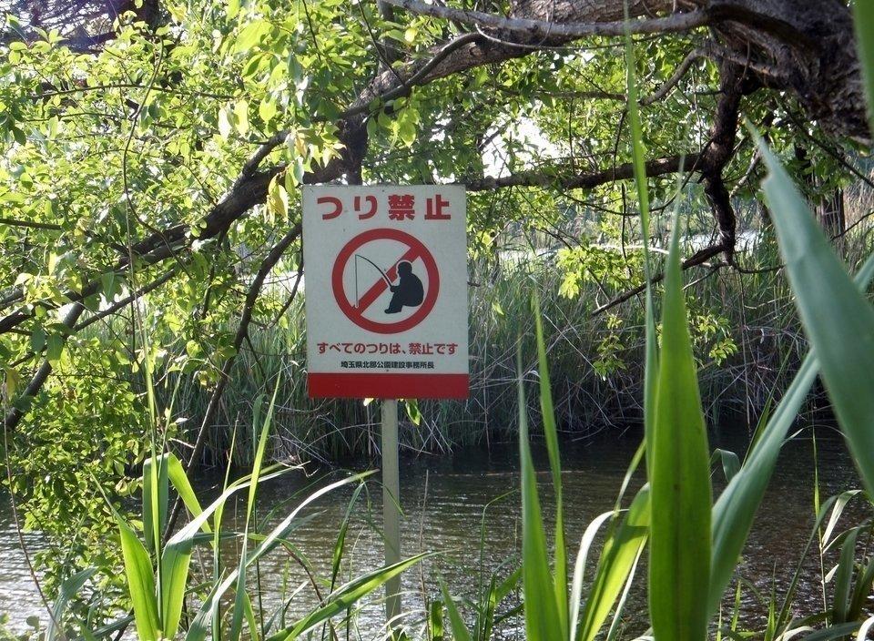 釣り 禁止 写真