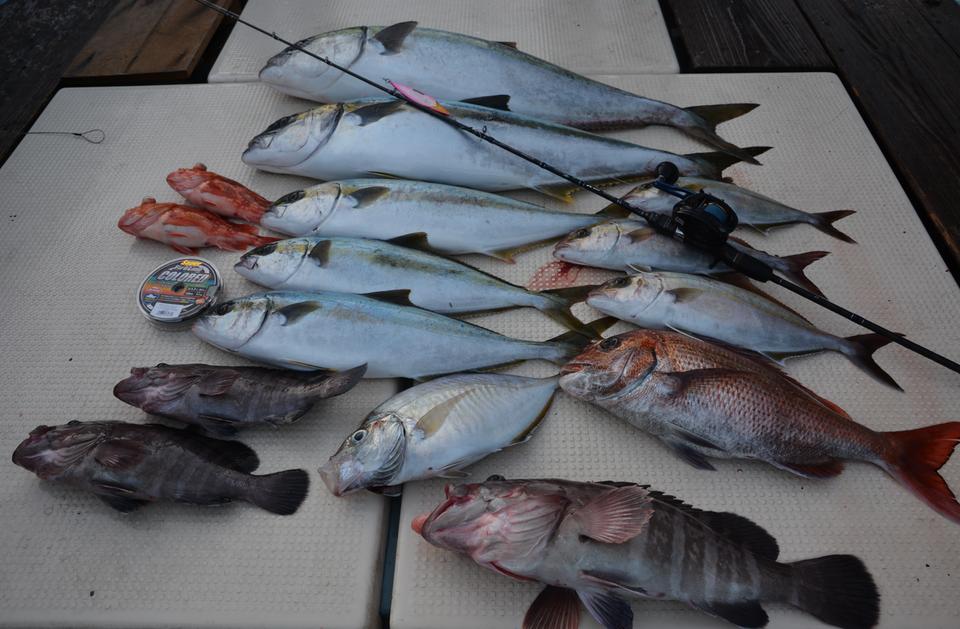スロージギングで釣り上げた魚の写真