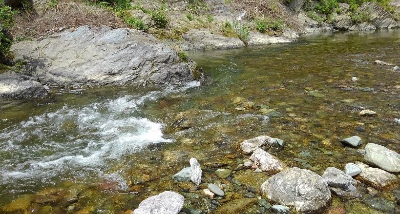 河川 写真