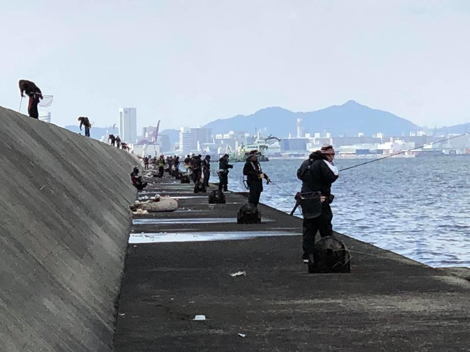 海 堤防 釣り人