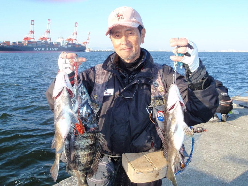 クロダイ 釣り人 男性 海 写真