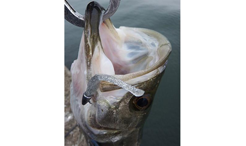シーバスをワームで狙ってみよう!ワームを使った釣り方やおすすめアイテムを紹介