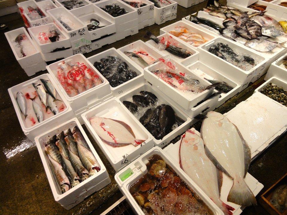 魚 市場 写真