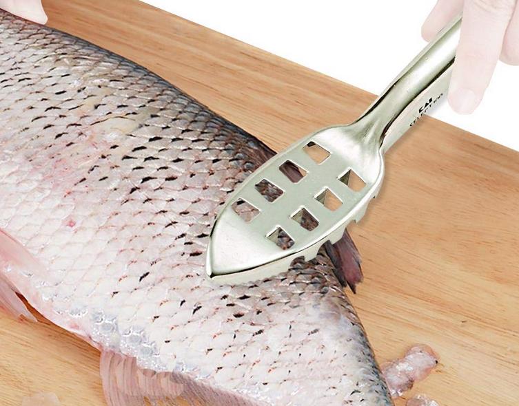 魚 アイテム 写真