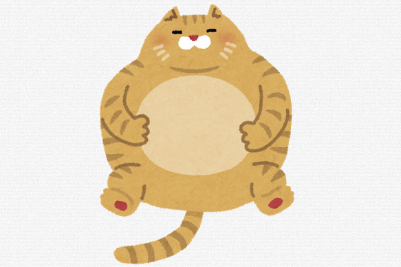 太ってマッチョなネコ