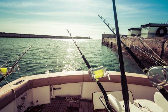 釣り 釣り船 釣り人口