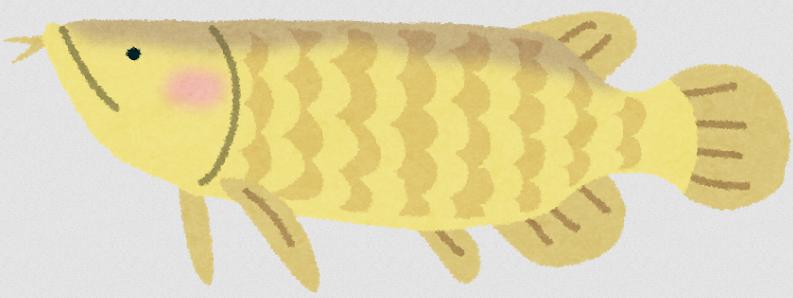 古代魚の中でも人気を誇るアロワナ