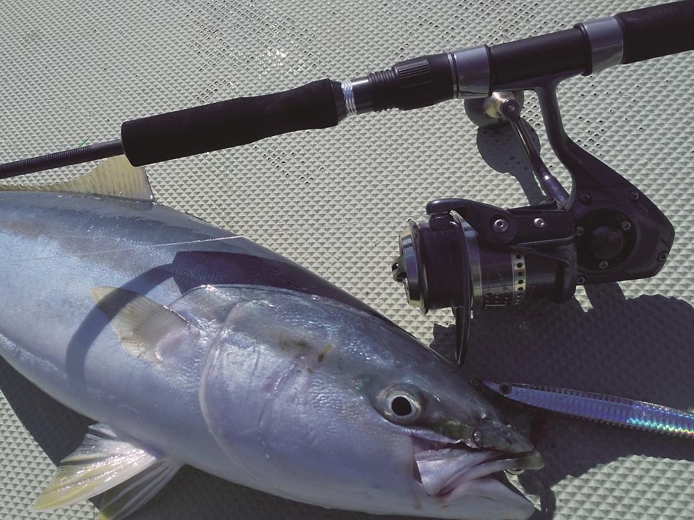 ジギングで釣れた魚の写真