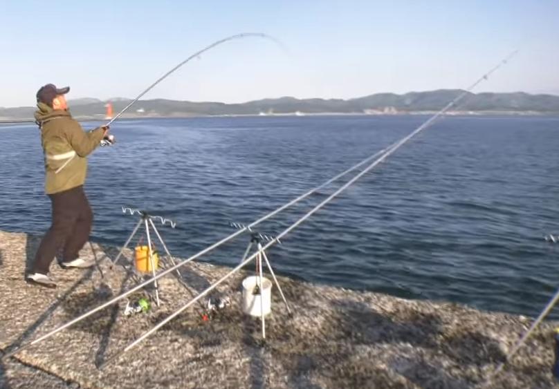 防波堤からの釣り