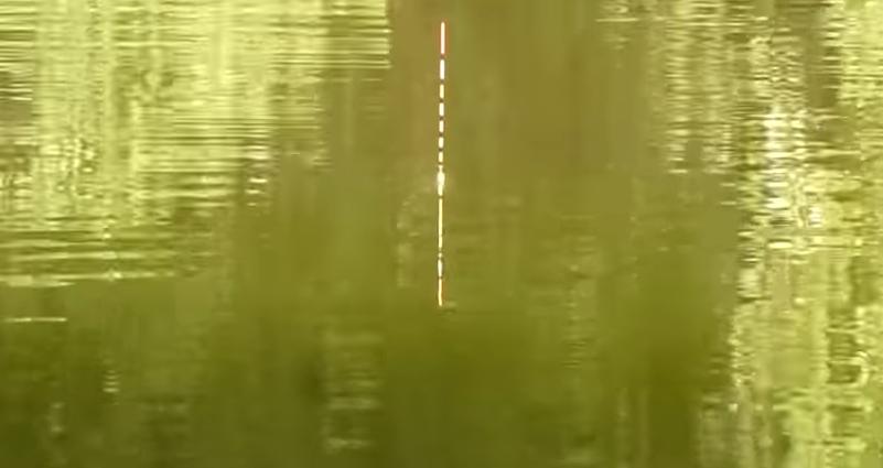 浮きが水面に浮いている写真