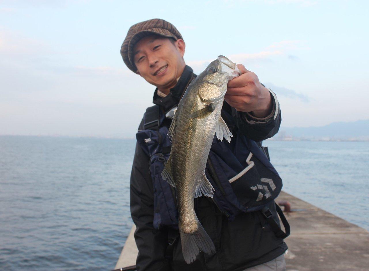 スズキ釣りの写真