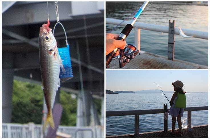 魚やロッドのアップ写真