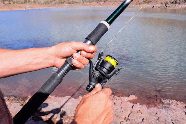 釣り スポーツ アメリカ