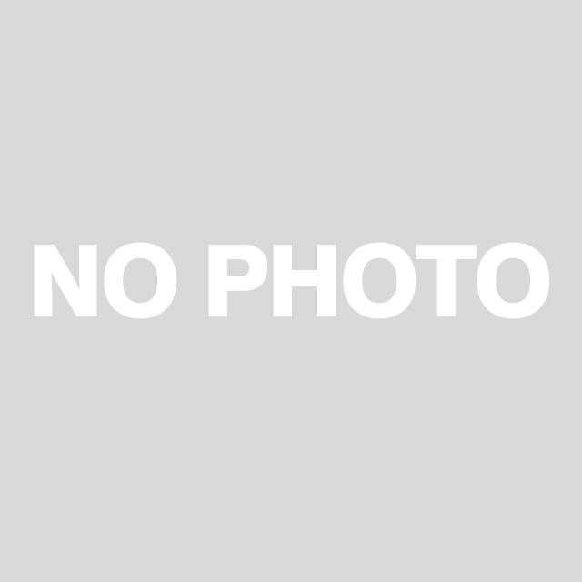 テイルウォークのロッドと釣り人の写真