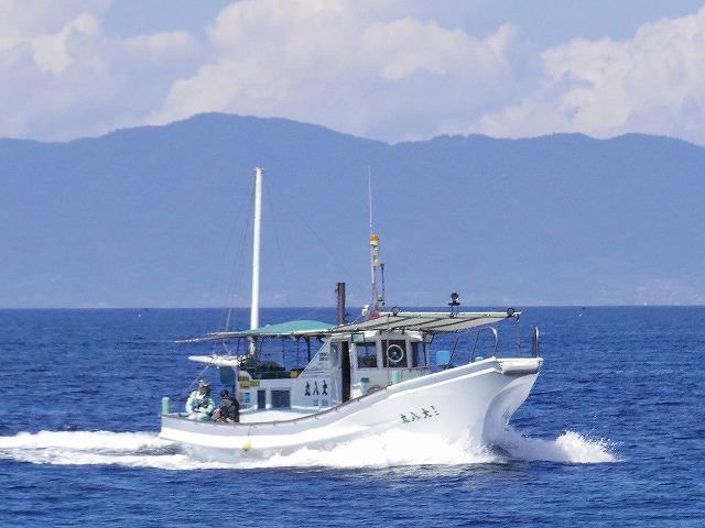 大八丸の公式釣り船予約「24時間受付・特別割引・ポイント還元」by釣割