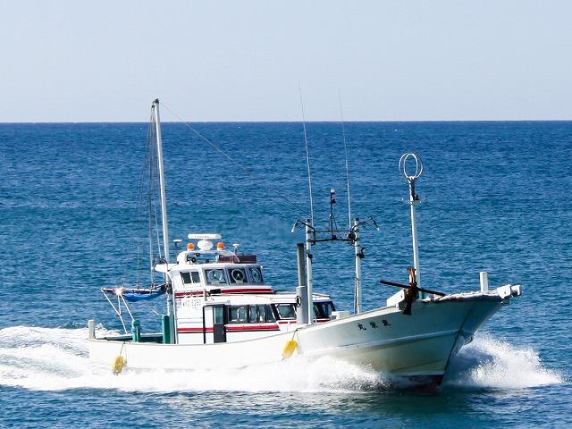 良栄丸の公式釣り船予約「24時間受付・特別割引・ポイント還元」by釣割