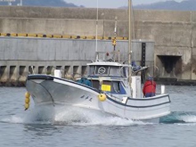 泰平丸の公式釣り船予約「24時間受付・特別割引・ポイント還元」by釣割