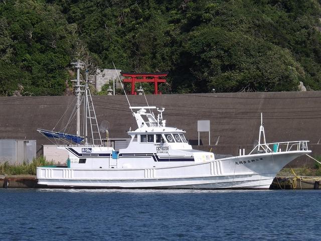 第三新生合同丸の公式釣り船予約「24時間受付・特別割引・ポイント還元」by釣割