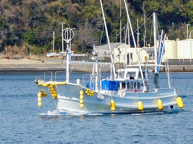 マリンクラブスサミ(令和丸)の公式釣り船予約「24時間受付・特別割引・ポイント還元」by釣割