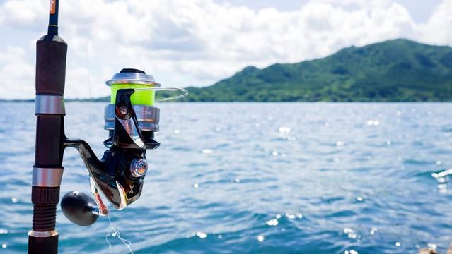 船釣りの画像